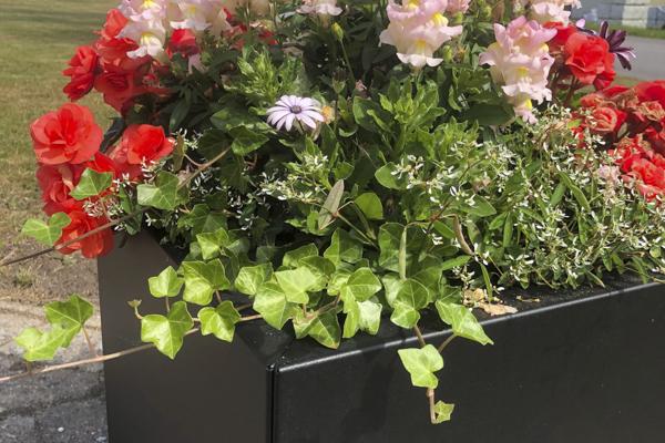 Planteringslådor